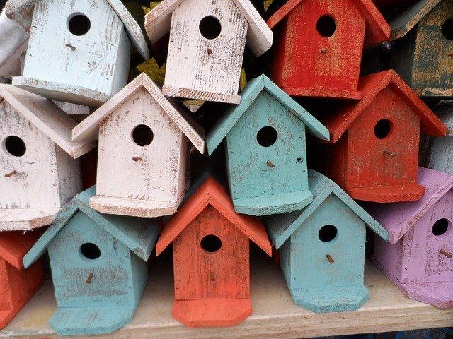 ptaci budky